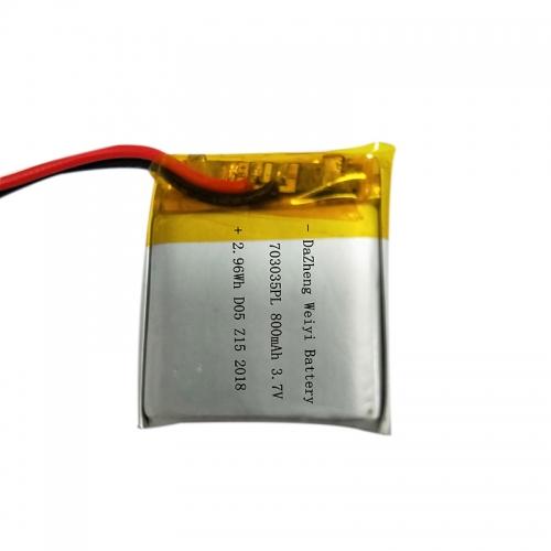Polymer lithium battery custom